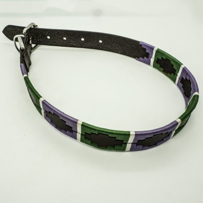 Lilac and Green Polo L Leather Collar