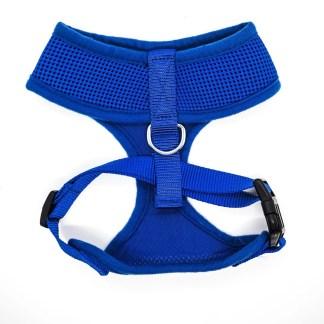 Blue Harness Medium