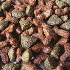 Close-up of premium dog kibble