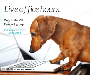 dog-training-office-hours