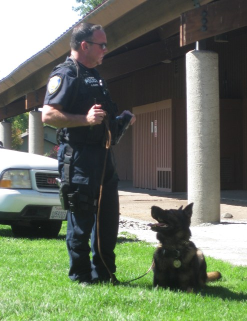 Working K-9 Team