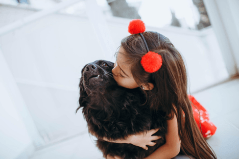 Tips to Choosing the Right Pet for Your Family