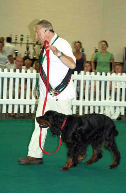 Me at the Just Dogs Live at the East of england Showground