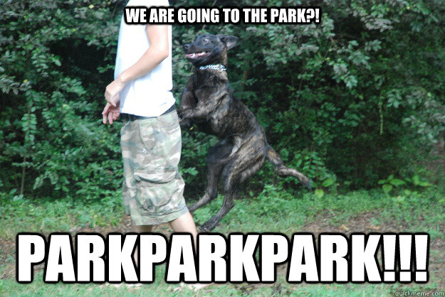 dog-park-meme-saturday