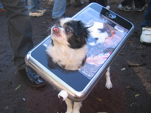 dog gets own phone