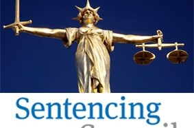 Major Shake-up of Sentencing for People Convicted of Dangerous Dog Offences 3