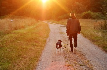 Do Dog Owners Really Live Longer - Myth or Fact: Dog Owners Are Healthier? 1