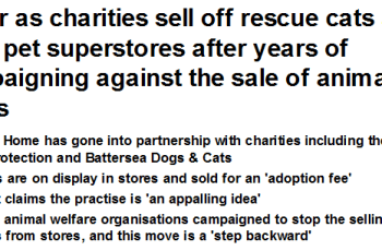 Ultimate Betrayal - Animal Charity Hypocrisy at its Very Worst? 1