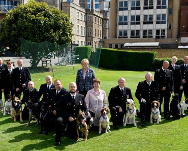 19 Police Dog Heroes Awarded for London Terror Attack Service 15
