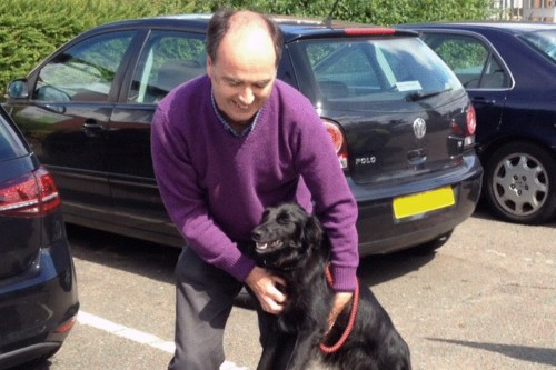 Dog lost on M4 reunited with owner
