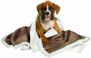 top rated blankets for dogs
