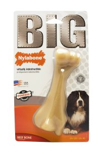 durable indestructible chew toy for dog