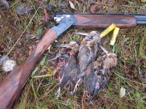 Success - 3 woodcock on 10/20