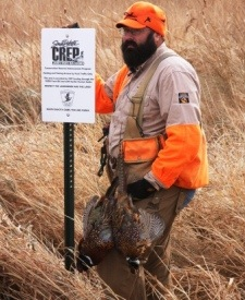 In South Dakota, CREP focuses on improving water quality, reducing soil erosion, and providing flood control all while creating additional pheasant nesting habitat and pheasant hunting access in the James River Watershed.