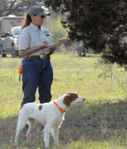 Sherry Ebert, one the nation's top gundog trainers. From sherryebert.com