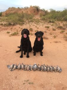 Angus, Tank, and the results of an afternoon hunt in west Texas