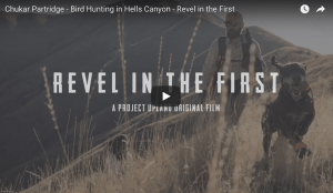 Watch: Revel in the first, chukar hunting in Idaho's Hell Canyon, a Project Upland film