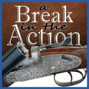 A Break in the Action Podcast