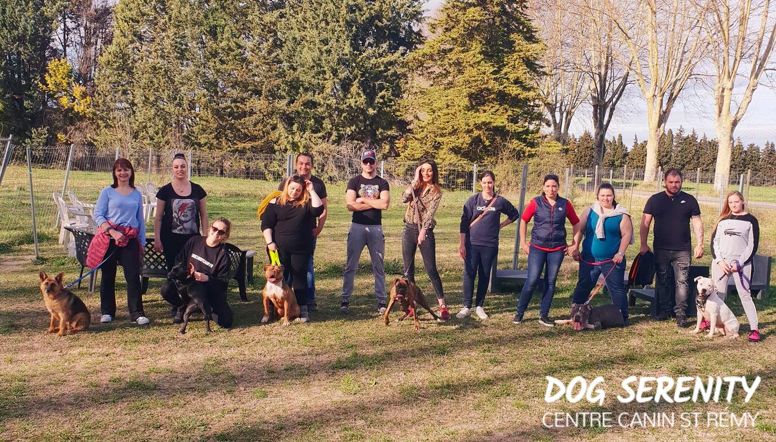 Balade éducation - éducation chien adulte