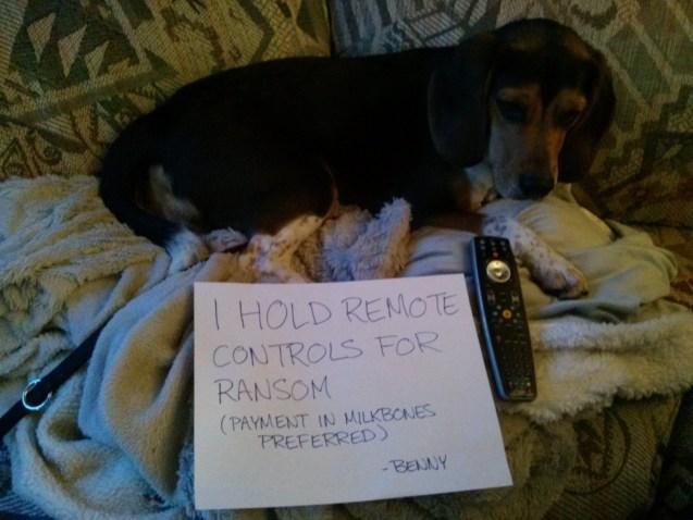 benny-shaming-remote