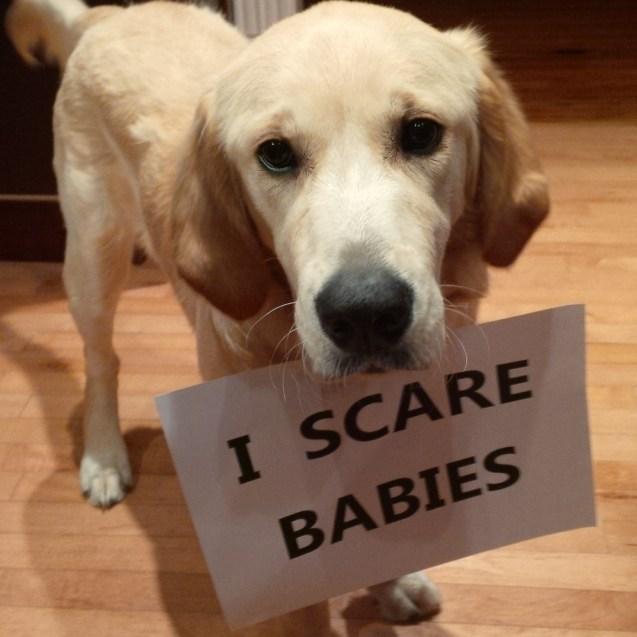 Peach-scares-babies
