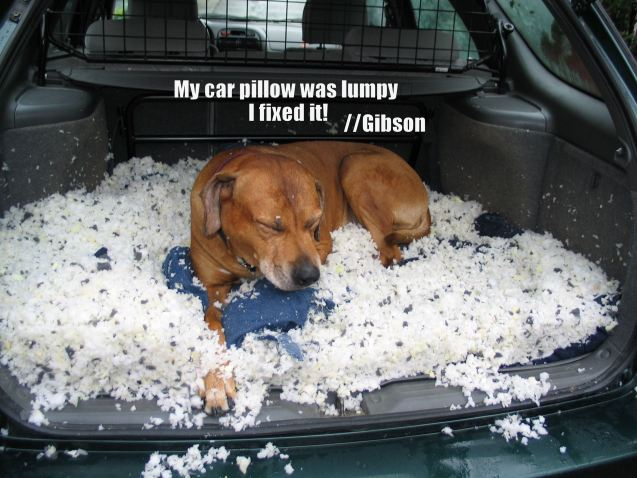 My-carpillow-was-lumpy-I-fixed-it