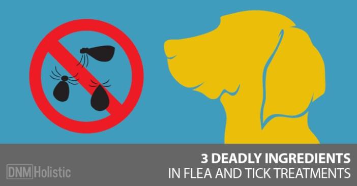 spot on flea and tick treatment