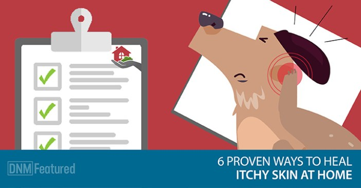 natural remedies for dog's itchy skin