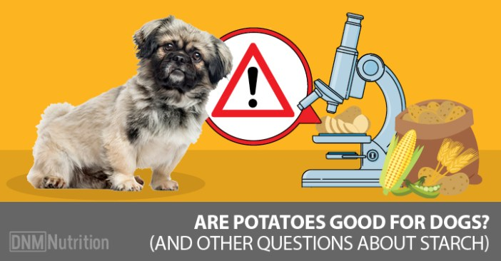 are potatoes good for dogs