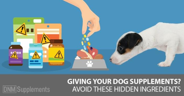 dog supplements