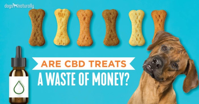 CBD dog treats