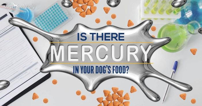 mercury in pet food