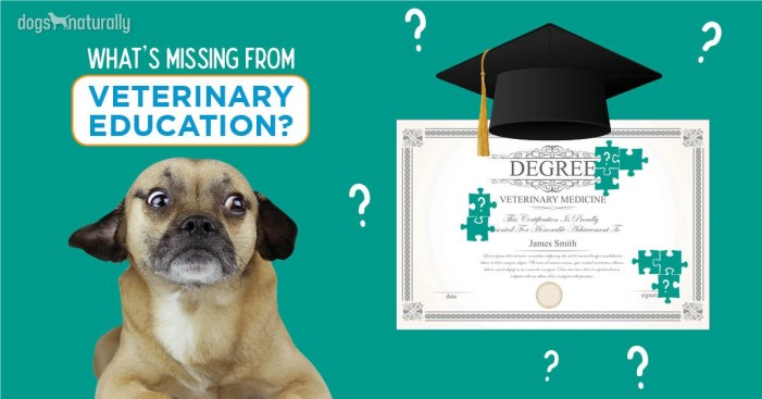 what's missing from veterinary education