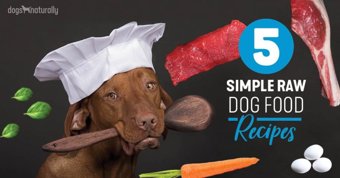 Raw Feeding Made Easy How To Make A Raw Dog Food Diet