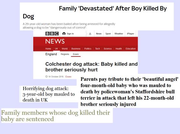 dog-kills