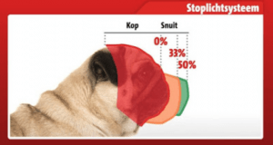 pug face measurement