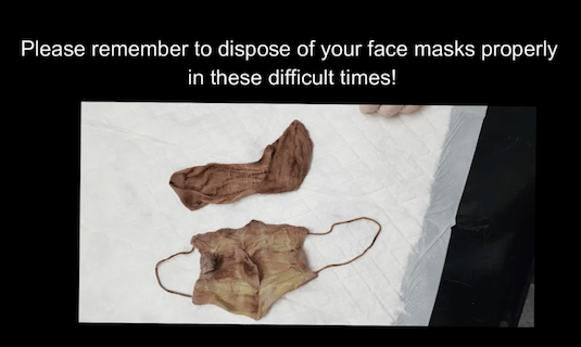 Discarded face mask and sock removed from Cockerpoo's gut
