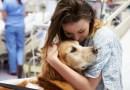 Specchio dei tempi e i Golden di Aslan portano la Pet Therapy  al polo oncologico di Candiolo.