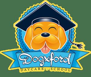 Dogxford.it