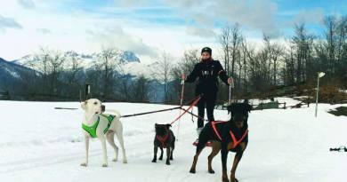 Una giornata con i nostri amici a 4 zampe sulla neve!!!