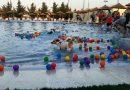 Dog Waterpark: il parco acquatico di Bari, dedicato al cane!