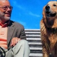 """""""Il cane secondo me"""", di Danilo Mainardi"""