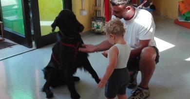 Il cane da Pet Therapy,  tutto quello che dobbiamo sapere.