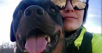 Una giornata particolare, con Ronda, la mia Rottweiler