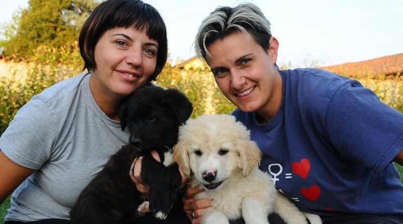 Angeli e Orme: onoranze funebri per il cane