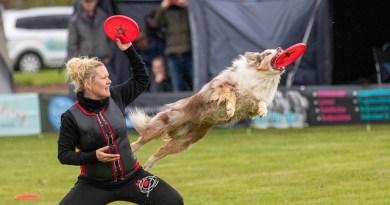 Fare sport con il cane è importante?