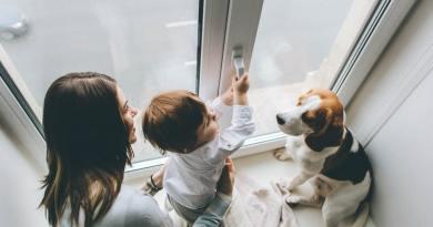 Mamma e cane: un'amicizia particolare