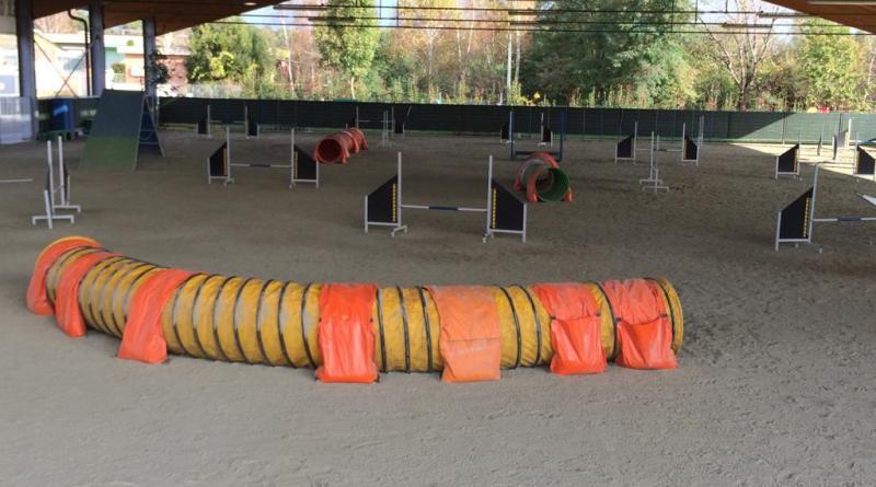 Centro cinofilo delle Vaude: educazione, sport e divertimento con il cane.