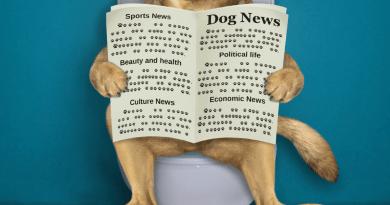 Il confine tra informazione e incoscienza: si chiama Cane.