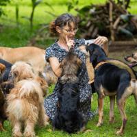 ANPCA denuncia: in Italia sono troppe le pensioni per cani irregolari.